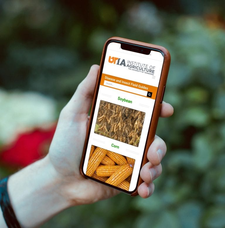 mobile web site for agriculture