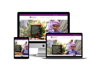 professional website design for nonprofit